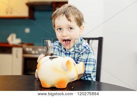 4 Year Old Boy Smashed Pig Piggy Bank