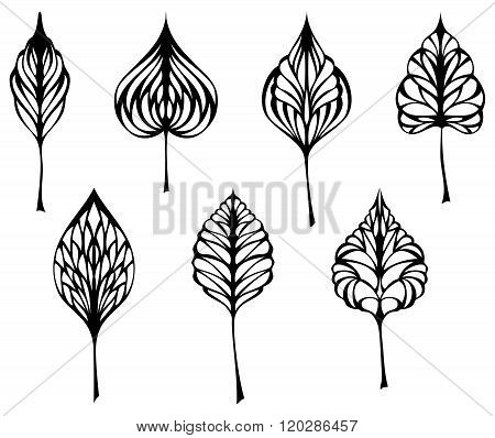 Set Of Leaves.