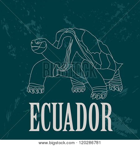 Ecuador. Galápagos tortoise bird as a national symbol. Vector illustration