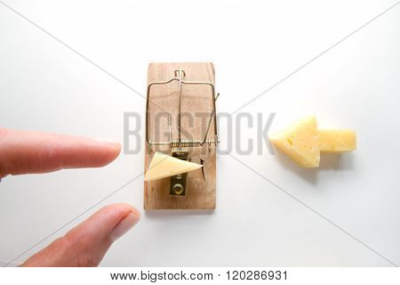 free cheese is in a mousetrap only