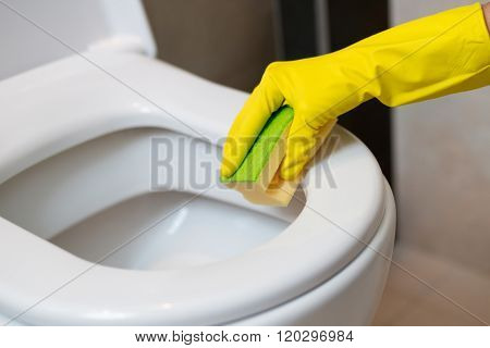 Cleaning Toilet In Wc