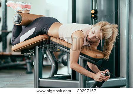 Leg Curlbench Workout