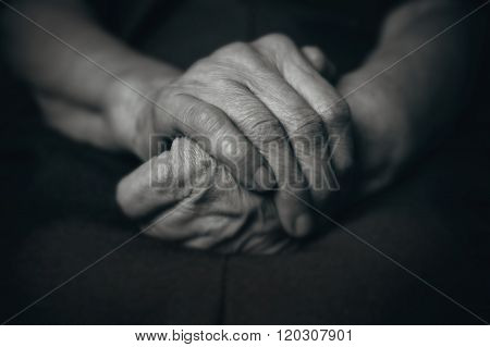 Two Hands Of An Old Man