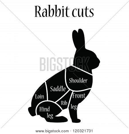 Rabbit Butcher Chart