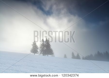 Winter Foggy Sunrise In Mountains
