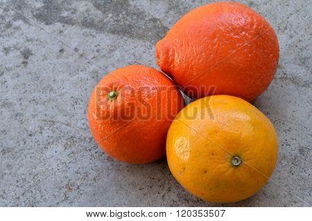 Valencia Orange And Tangelos