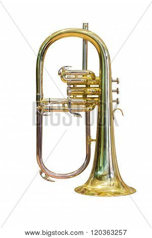 horn isolated on white background