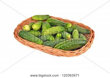 Cucumber Gherkin In A Wattled Basket