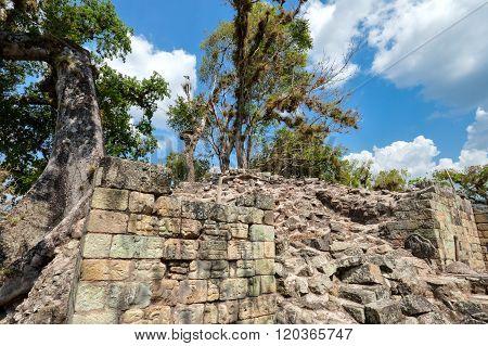 Copan Archaeological Site In Honduras