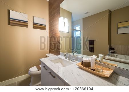 Interior design of a luxury bathroom with a wood wall and a large mirror.