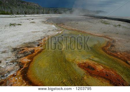 Tapete colorido de Yellowstone