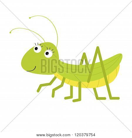 Grasshopper. Cute Cartoon Character. White Background. Isolated.  Baby Insect Collection. Flat Desig
