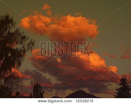 Fluffy Skies