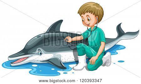 Vet checking up dolphin illustration