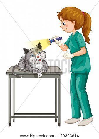 Vet checking up cats ear illustration