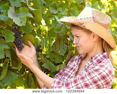 Female farmer in vineyard