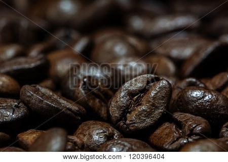 Macro Shot Of Roasted Coffee Beans As Dark Brown Background Texture With Copy Space
