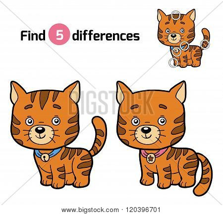 Find Differences For Children (ginger Cat)