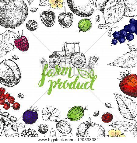 Food design template