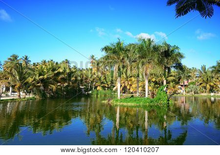 Tropical Garden With Beautiful Lake In Luxury Resort, Dominican Republic