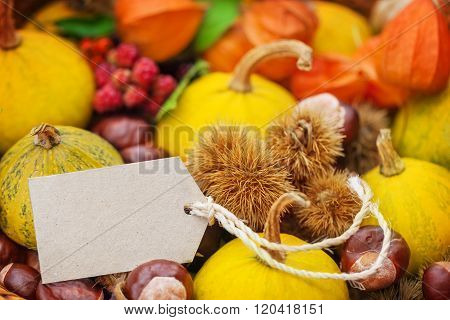 Autumn Fruits, Label To Fall Decoration