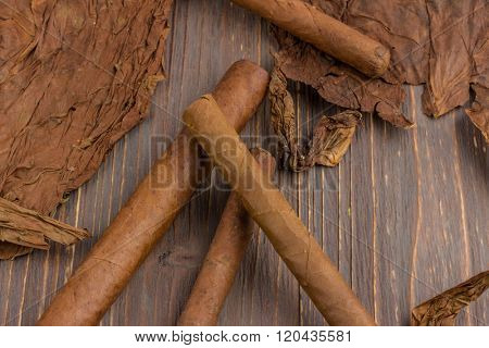cigars and tobacco leaves