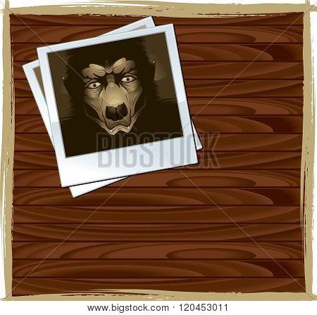 Monster Photo
