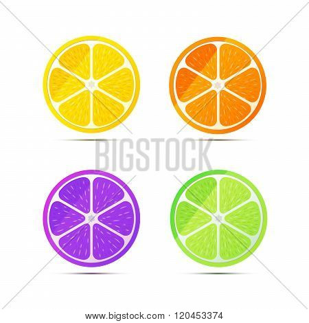 Set of glossy fruit slices on white