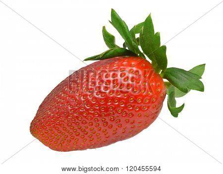 Single strawberry isolated on white background with path. Macro image.