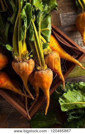 Raw Organic Golden Beets