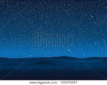 Vector. Silhouette grass. Starry Sky. Eps 10.