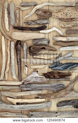 Natural driftwood abstract on oak wood background.