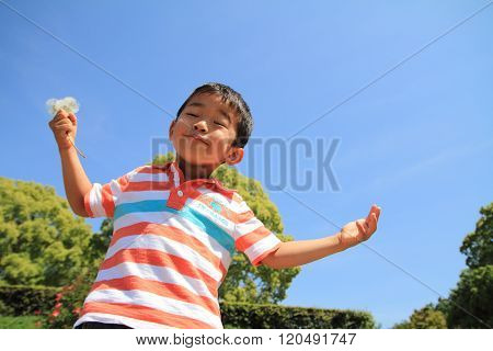 Japanese boy blowing dandelion seeds (4 years old)