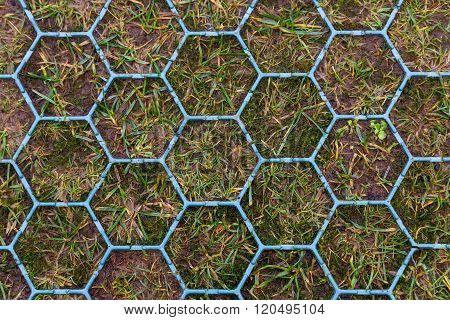 Hexagonal Shaped Anti Skid Footpath