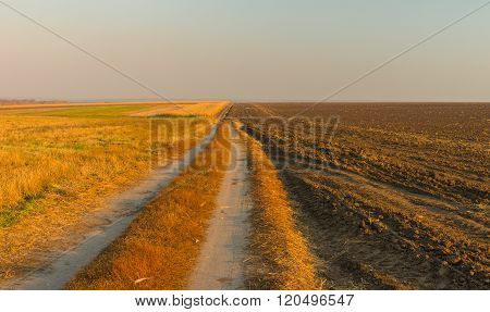 Evening landscape with agricultural fields in Ukraine at fall season