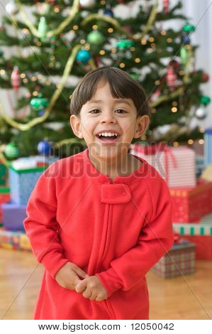 Portrait of a little boy in front of Christmas tree