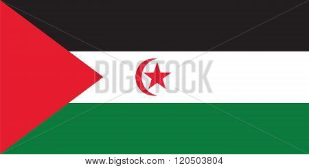 Standard Proportions For Western Sahara Official Flag