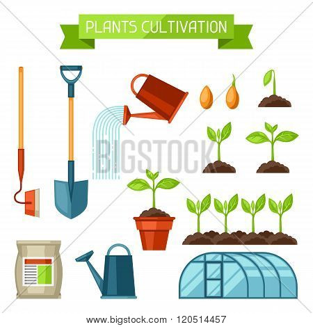 Set of agriculture objects. Instruments for cultivation, plants seedling process, stage plant growth