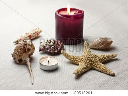 Still Life With Sea Shells And Lit Candles