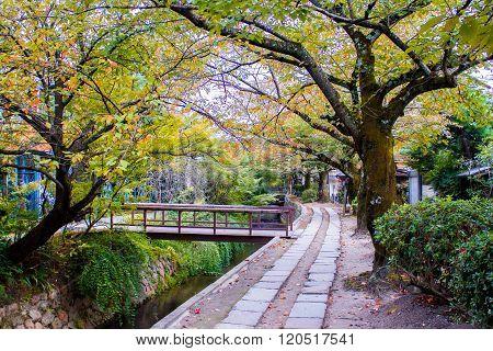 Philosopher's Walk In Kyoto, Japan