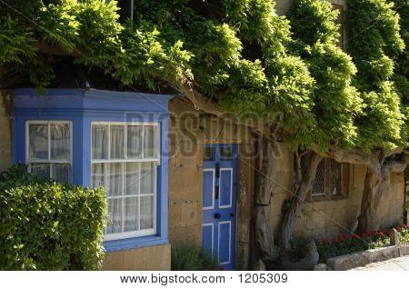 Organic Cottage