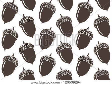 Acorn. Pattern