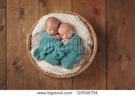Twin Baby Boys Sleeping In A Basket