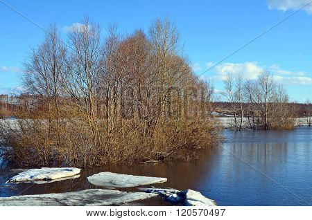 Spring Landscape With The River And Ice Floes