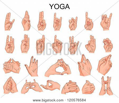 illustration of the various positions of your hands in yoga, in meditation, the wise