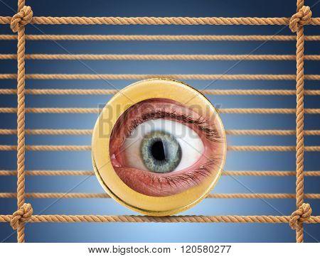 Human eye in the coin