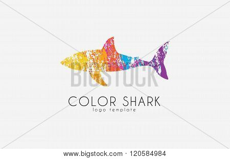 Shark logo. Color shark. Logo in grunge style. Creative logo design