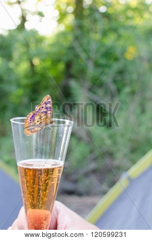 Butterfly Drinking Sparkling Wine Vertical
