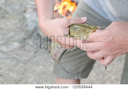 Fisherman Removing Hook Closeup
