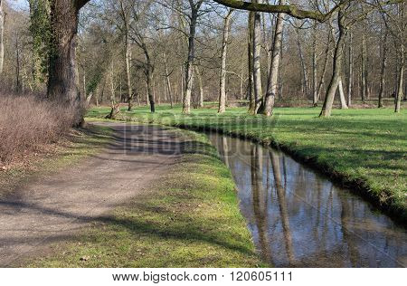 A path and a brook in a forest
